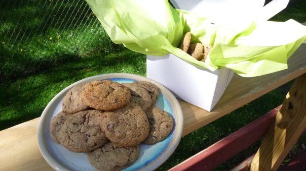 Oatmeal Double Chocolate Cookies